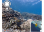 google_street-view-at_seaworld